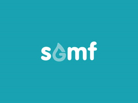Society For Gas as a Marine Fuel (SGMF) launched as new Non-Governmental Organisation
